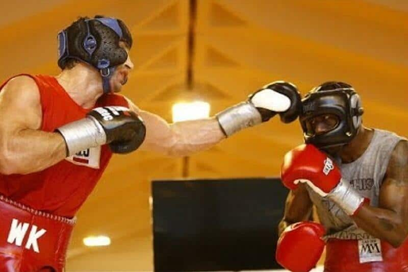 Image result for klitschko wilder sparring tsmplug.com